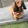 Ellie loves Enrichment :)