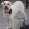 Casper looking handsome!