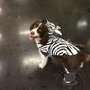 Cooper the zebra!!