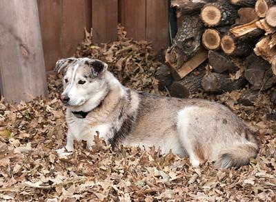 November 22, 2007 Thelma