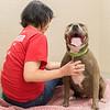 Print(L)_SHS DogMassage_MassageTherapy-8030