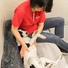 Print(L)_SHS DogMassage_MassageTherapy-8176