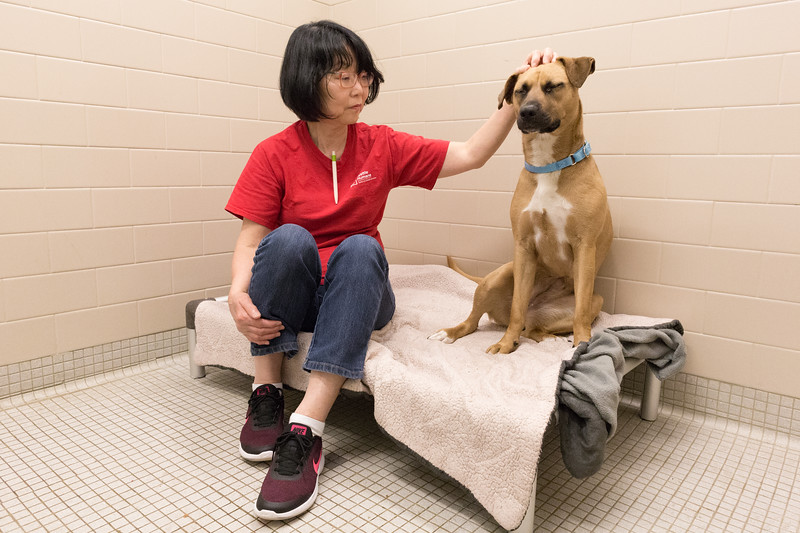 Print(L)_SHS DogMassage_MassageTherapy-8196