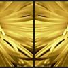 4x8 yellow tint card