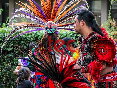 Petaluma's 2015 El Dia de los Muertos Celebration