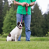 Gather-from-Petcurean-0113
