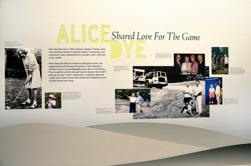 "AliceDye""SharedLove"""