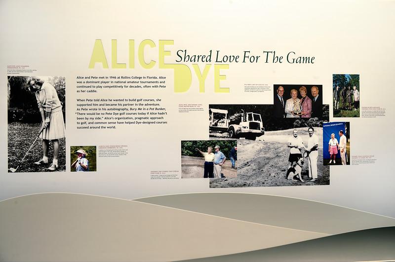 """AliceDye""""SharedLove"""""""