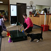 HOLLY PELCZYNSKI - BENNINGTON BANNER Karson Kiesinger, and Carrie Gutbier Librarians at the Bennington Free Library set up a mini golf hole on Monday afternoon. The Green is a practice hole for the upcoming Library Mini Golf taking place Feb. 28 & 29 open to all to take place in the 18 hole mini golf course while exploring the library and taking place in some indoor fun.