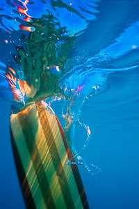 Wood Canoe paddles underwater in the clear clean waters of Atlin Lake in Northern BC.