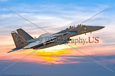 F-15E-USAF-LN 0002 A flying Boeing F-15E Strike Eagle USAF fighter-bomber 91311 LN code 48th FW 7-2017 military airplane picture by Peter J  Mancus     DONEwt copy