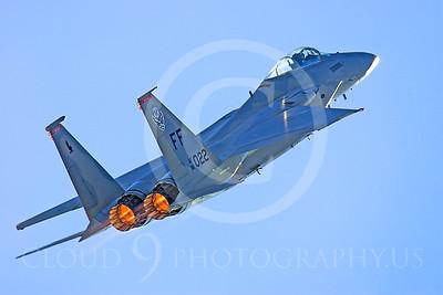 ABF15 00002 McDonnell Douglas F-15 Eagle by Peter J Mancus