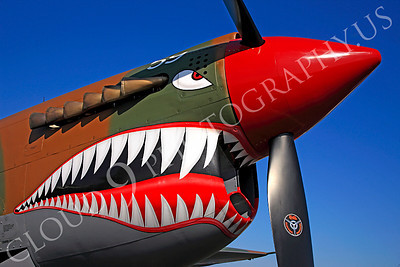 SM 00119 Curtiss P-40 Warhawk Flying Tiger by Peter J Mancus