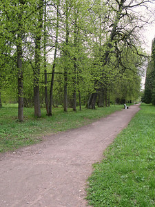 Alley in the upper park