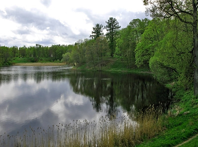 The lower (Petrovskii) park, dark  pond