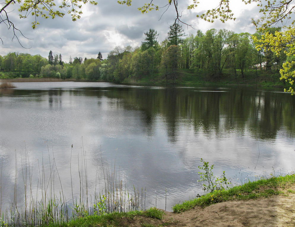 Pond in the lower (Petrovskii) park