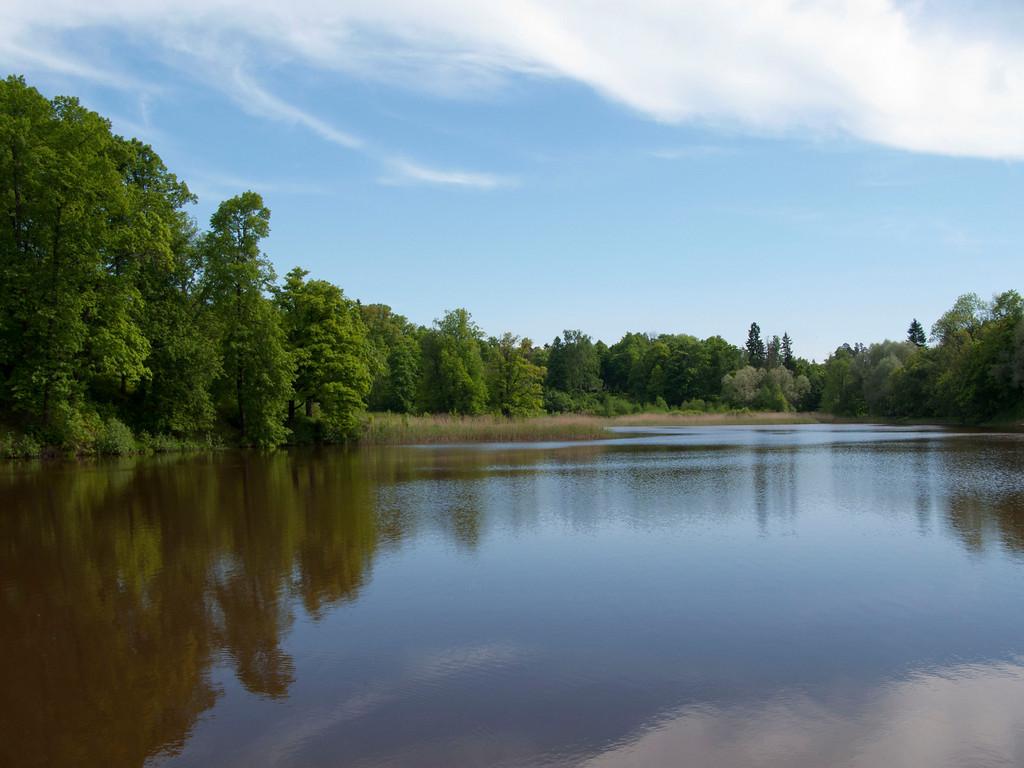 The lower pond. Petrovslii park, 6