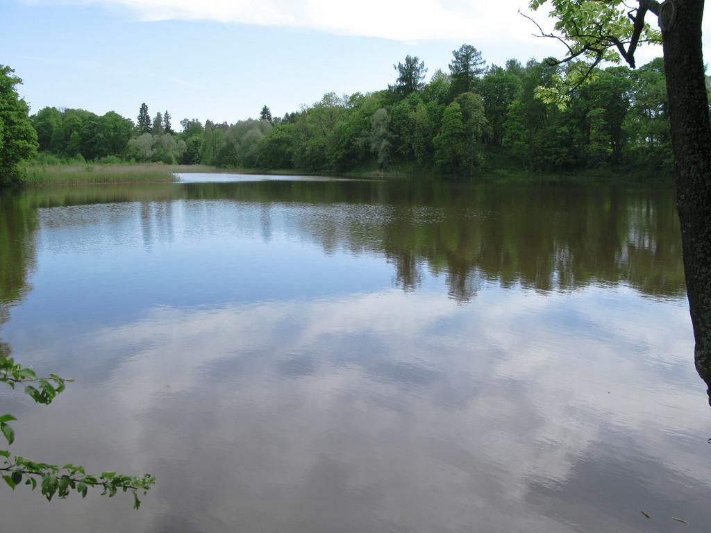The lower pond. Petrovslii park, 1