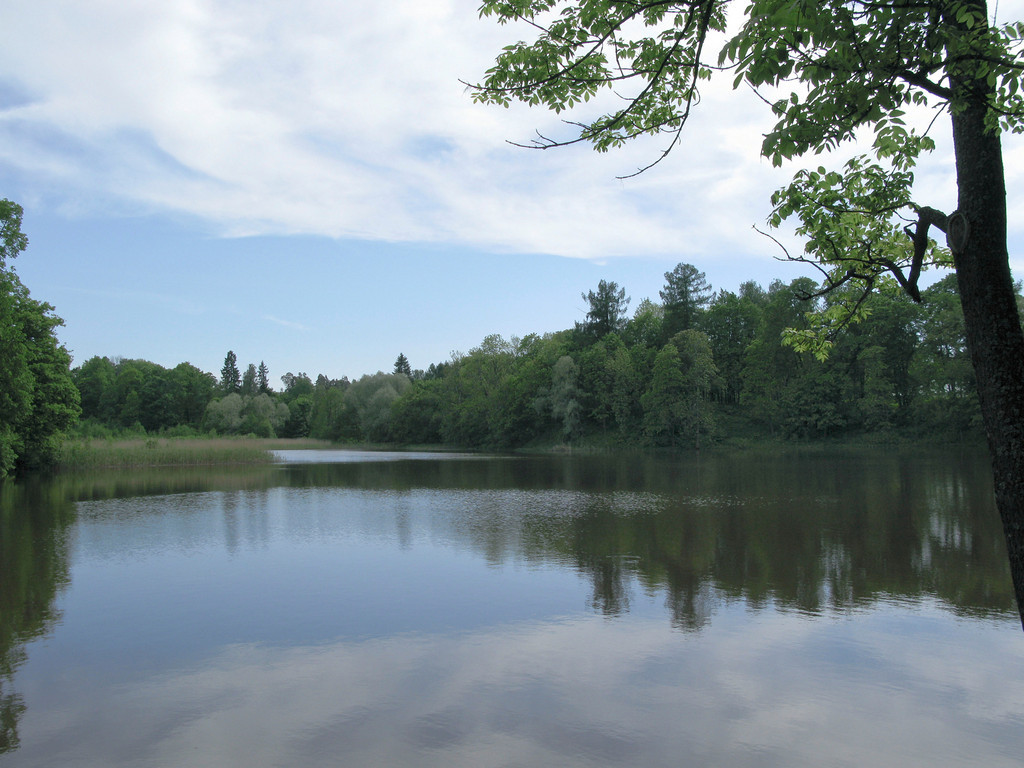 The lower pond. Petrovslii park, 2