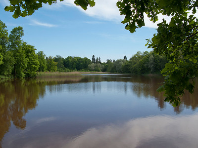 The lower pond. Petrovslii park, 4