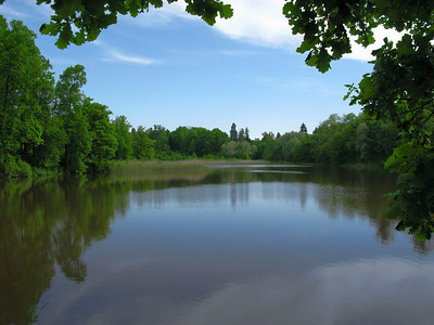 The lower pond. Petrovslii park, 3