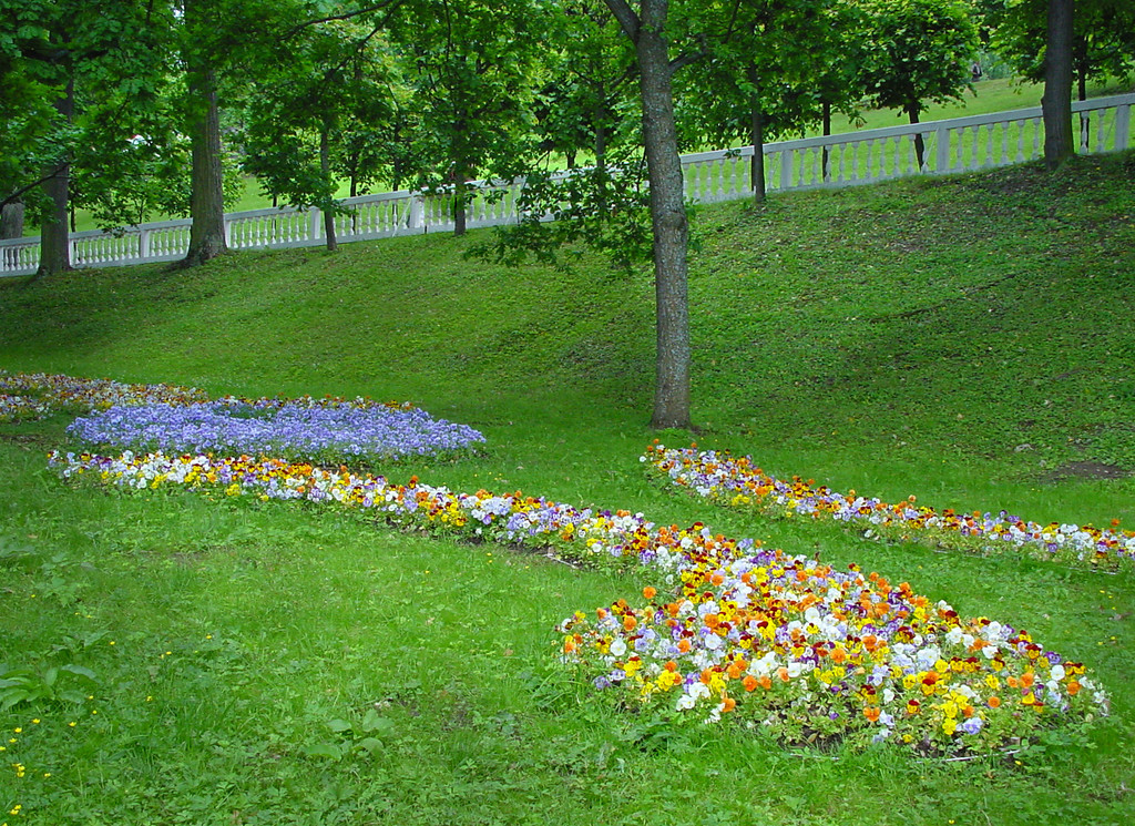 Flowerbeds in the lower park