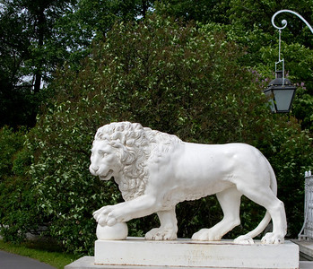 Elagin island, Lion in the park.