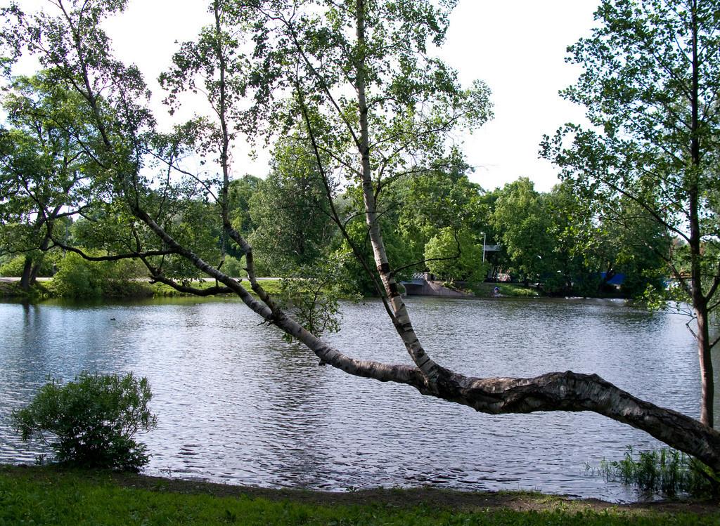 Stone island, near the bank