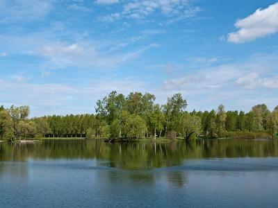 Pond in Pobeda Park, morning