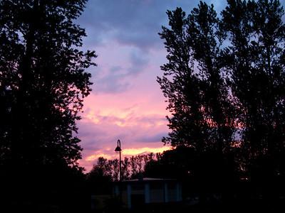 Sunset in park before rain.
