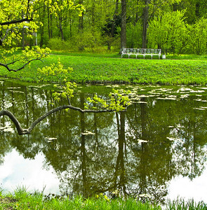 Spring. Alexander park.