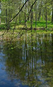 Alexandria Park. Pond.