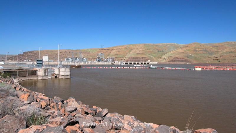 LIttle Goose Dam 4
