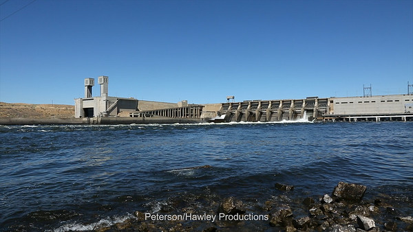 Ice Harbor Dam1