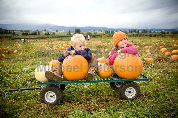 PumpkinPatch_1026