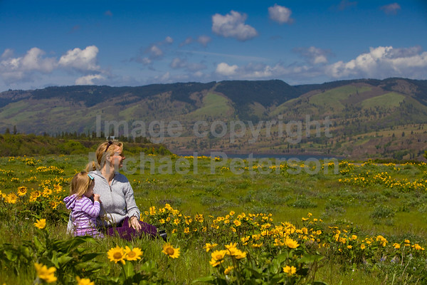 Mother and daughter in Balsamroot field overlooking the Columbia River Gorge near Mosier Oregon. Release forms signed.