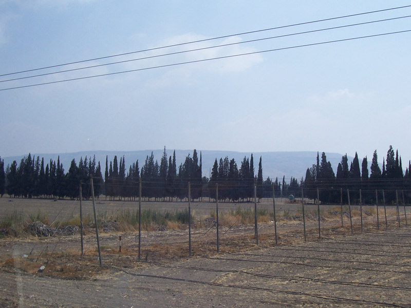 A far-off view of the Golan Heights (see background)