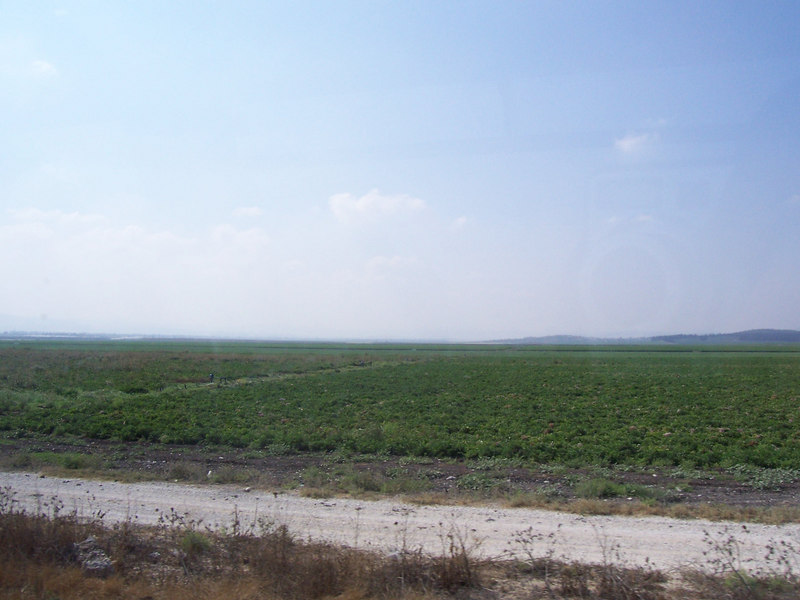 Northern Israel is a lot of farmland- very different from the south, which is all arid and desert.