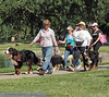 2013 Elk Grove K9 Cancer Walk 199