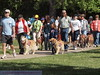 2013 Elk Grove K9 Cancer Walk 174