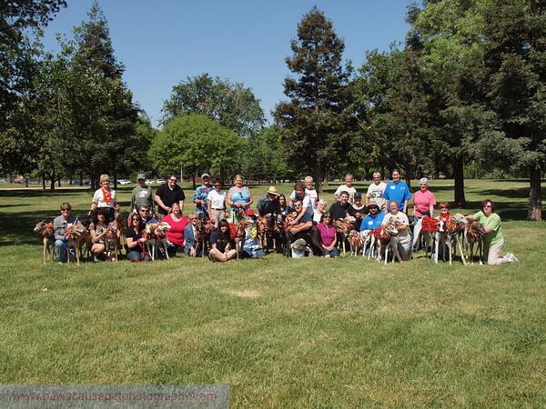 2013 Elk Grove K9 Cancer Walk 302