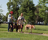 2013 Elk Grove K9 Cancer Walk 098