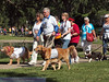 2013 Elk Grove K9 Cancer Walk 184a