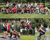 greyhound collage 8x10b copy