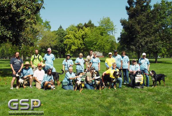 2012 K9 Cancer Walk 233