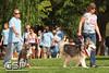 2012 K9 Cancer Walk 073