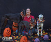 Greyhound Play Day 476a
