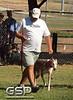 Greyhound Play Day 090a