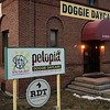 Petopia Doggie Daycare in Leominster. SENTINEL & ENTERPRISE / Ashley Green