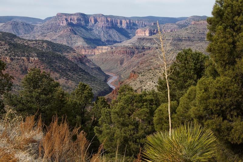 Salt River Canyon, Globe, Arizona